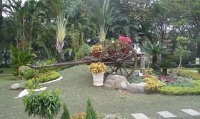 Công viên cây xanh